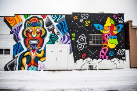 Color Block Murals in the winter