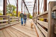 Couple walking puppy across Phoenix Park bridge