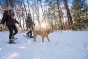 Couple snowshoeing with dog